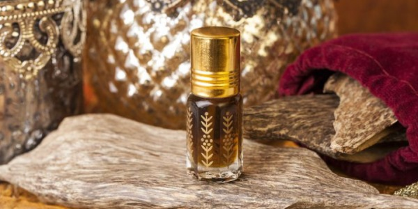 The Importance of Oud in Perfumery!